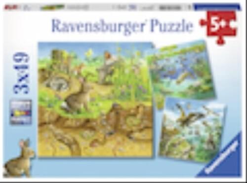 Ravensburger 08050 Puzzle: Tiere in ihren Lebensräumen, 3x49 Teile